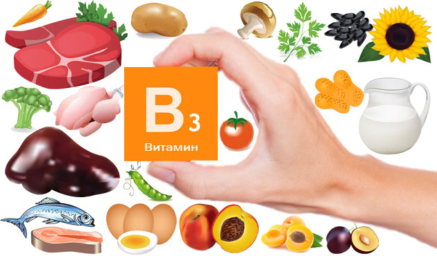 Продукты с витамином В3